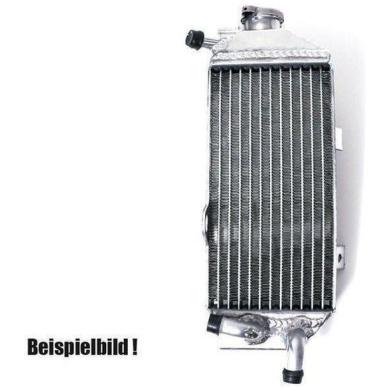 Kühler Beta mit Deckel RR250/300 2T 2013- 15 3